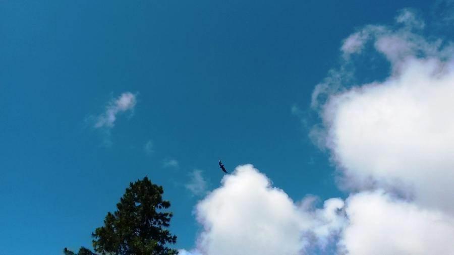 Voar, Voar