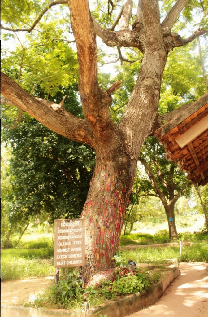 Chankiri Tree, onde os estúpidos animais humanos batiam as cabeças das criancas!