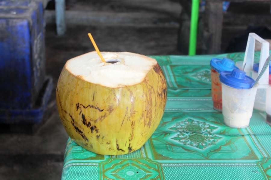 Maior coco que eu já vi