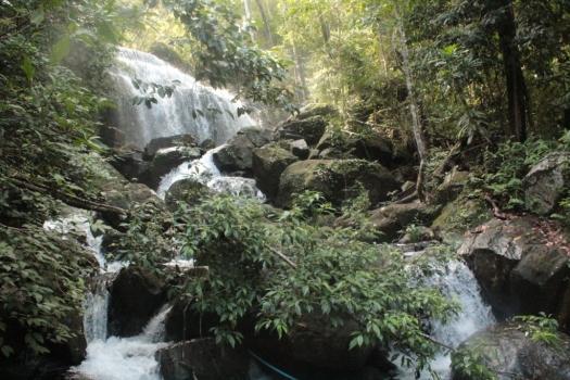 Cachu em Koh Rong